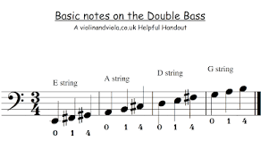 Beginners Notes On The Staff And What String They Are On