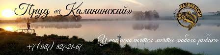 Пруд «Калининский» | ВКонтакте