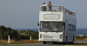 Image result for bus going over a cliff