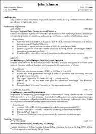 Example Of Professional Resume | berathen.Com