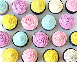 Cupcake Shop Business Plan Plan Templates Cupcakes Business Proposal
