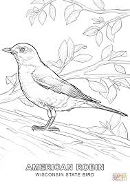 Wisconsin State Bird Coloring Page Free Printable Coloring Pages