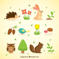 Image result for spring in nature and animals