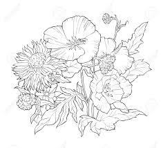手描きの花の塗り絵黒と白の夏イラスト