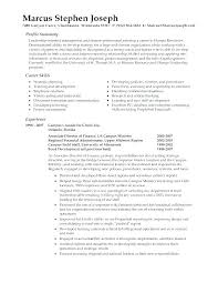 How To Write A First Resume Job Resume Summary How To Write A Brief