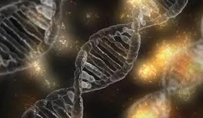 Dos químicos de Scripps Research lanzan una nueva teoría sobre el origen de la  vida