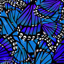 Butterfly Pattern Custom Seamless Monarch Butterfly Pattern Wings On White In Blue Royalty