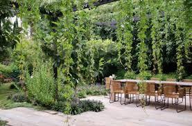 shade garden and patio