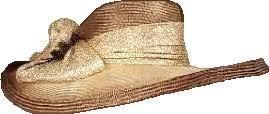 """Résultat de recherche d'images pour """"gifs chapeau de paille"""""""