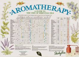 Shirley Price Aromatherapy Reference Chart A2