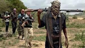 Image result for Boko Haram members kill 18 people in northeast Nigeria