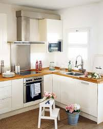 For A Small Kitchen Space Pink Small Kitchen Ideas Quicuacom