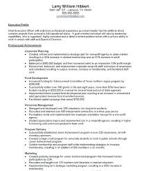 Sample Resume Download Stunning Ceo Sample Resume Pleasing Sample Resume Board Of Directors Position