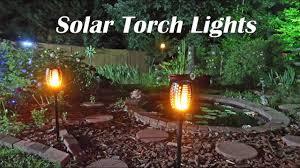 Tiki Lights Amazon