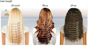 Lace Wig Hair Length Chart 6a Silky Straight Full Lace Human Hair Wigs Straight Lace