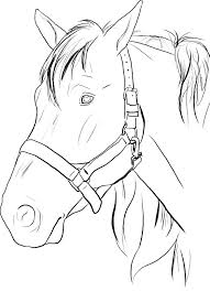 horse face coloring page.  Horse Pin By Miss B On GBABY PARTY TIME   Pinterest Coloring Pages Color  And Horse Coloring Pages Intended Face Page R