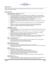 Media Buyer Resume Esay Seoessex Co