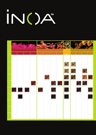 Inoa Hair Color Chart Pdf Lajoshrich Com