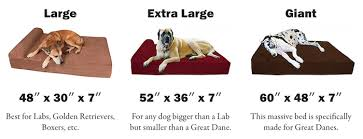 big barker dog beds. Contemporary Barker Big Barker Sizes Inside Big Barker Dog Beds O