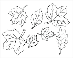Leaves For Coloring Coloring Pages For Fall Leaves Coloring Pages