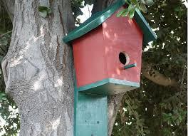 bluebird house plans. 11 Cool Bluebird House Plans To Attract Them Yard