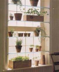 indoor window garden. the urban gardener: indoor window garden inspiration o
