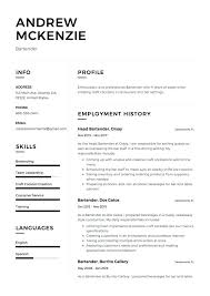 Resume For A Bartender New Resume Template WordPress Bartender Samples Sample Example Of