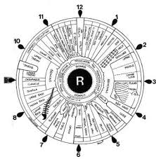 File Iridology Iris Eye Chart Right Mirror Jpg Wikimedia