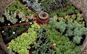 small space garden ideas and inspiration pallet herb gardens