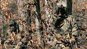 free realtree camo wallpapers page 3 of 3 wallpaperwiki
