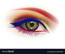 female eye makeup vector image