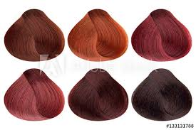 Copper Red Hair Color Chart Set Of Locks Of Six Different Red Hair Color Samples Copper