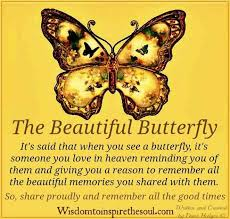 Beautiful Butterfly Quotes Best of The Beautiful Butterfly Love Quotes And Thoughts About My Soulmate