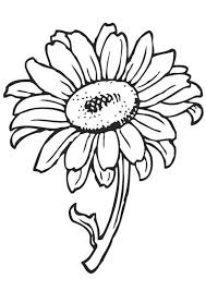 Choose from hundreds of free sunflower pictures. Free Sunflower Coloring Pages For Kids Free Coloring Sheets Printable Flower Coloring Pages Butterfly Coloring Page Sunflower Coloring Pages