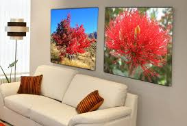 canvas prints on wall art prints nz with canvas prints canvas wall art stretched canvas prints get