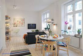 Decorate And Design Apartment Stylish Studio Interior Design Ideas Decorating 46