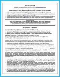 Areas Of Expertise List Areas Of Expertise Resume Resumes Sales Example List Thomasbosscher 2