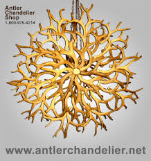 68 most out of this world elk antler chandelier deer light whitetail australia faux white horn