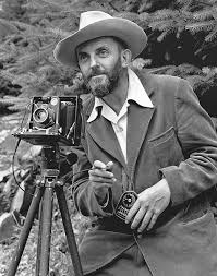 Ansel Adams Quotes 30 Awesome Twelve Significant Photographs In Any One Year Is A Good Crop