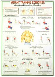 Weight Training Chart With Pictures Dumbbell And Barbell Weight Training Instruction Charts Set