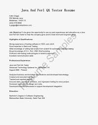perl resume sample