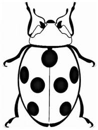 Small Picture printable bugs Bug Insect Coloring Pages PrimaryGames