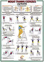Yukon Fitness Leg Muscles