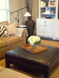 Coffee Table Unusual Zebra Hide Furniture Stores Albany Ny