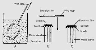 diagrams showing the procedures of the wire loop method for emrag a loop wiring diagram instrumentation diagrams showing the procedures of the wire loop method for emrag a, a wire loop is dipped into melted and diluted emulsion and pulled up