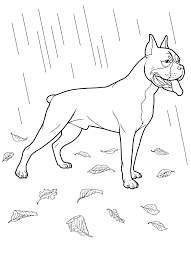 Small Picture Labrador Retriever Coloring Pages Dog Coloring Pages Teenagers