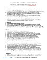 Business Analysis Report Sample Fleet Report Template Unique Business Analysis Report Sample and 1