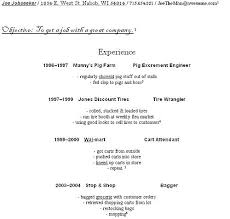 How To Write An Entry Level Resume Unique Sample Resume For Beginners Creative How To Make A Resume For