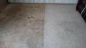 oriental rug cleaning phoenix upholstery and carpet cleaning and sunrise chem dry oriental rug cleaning phoenix az