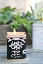 recycled diy citronella candles